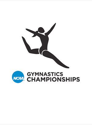 Women's European gymnastics championship (2008)