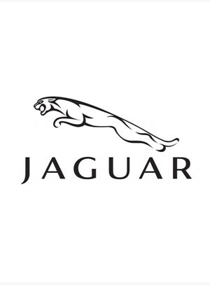 Jaguar Running Footage